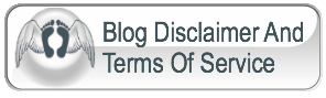 Blog Disclaimer and Terms Of Service